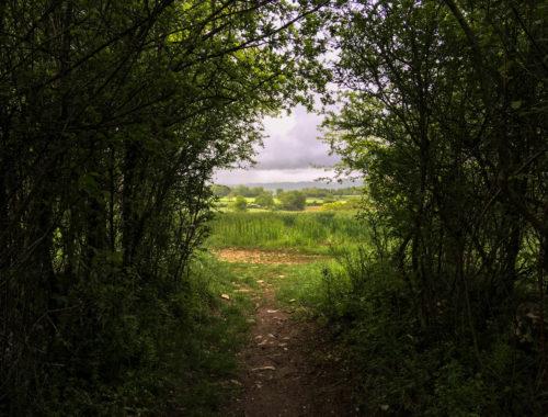 Chemin de Compostelle randonnée aveyron