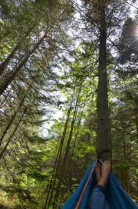 Hamac forêt PVT Canada