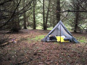 bivouaquer tente tarp forêt