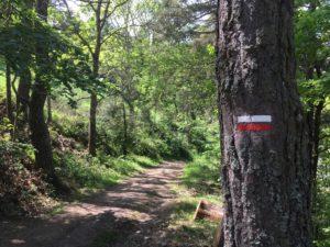 GR 65 Saint Jacques Randonnée