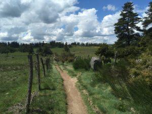 chemin st jacques compostelle randonnée