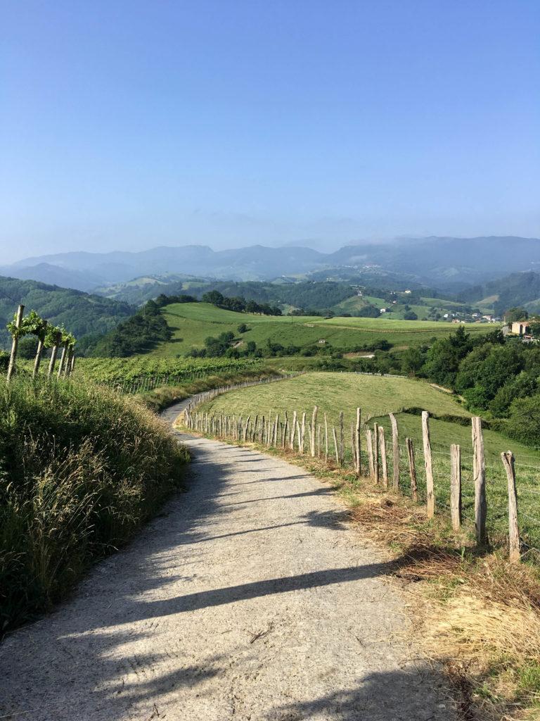 Camino del norte chemin de st jacques