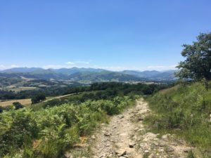 Compostelle chemin randonnée