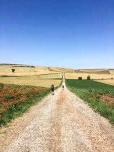 st jacques randonnée rando chemin