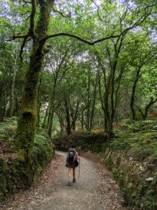 Pèlerine st jacques compostelle randonnée